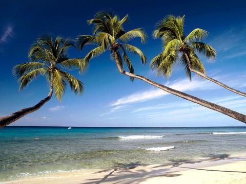 Hawaii_strond_sigling.jpg