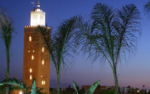les_jardins_de_la_koutoubia_marrakesh_5.jpeg