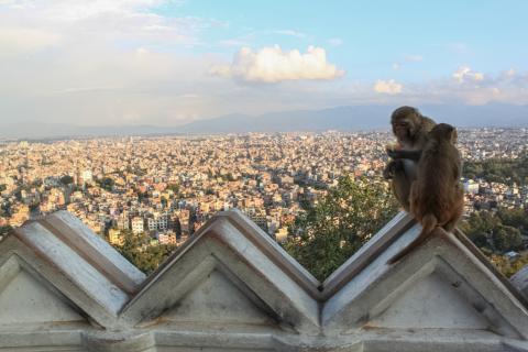 nepal_og_butan_kathmandu_swayambhunath_stupa.jpg