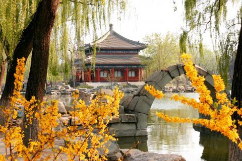 shanghai_1.jpg