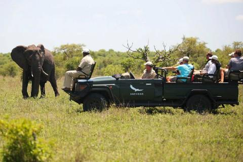 sudur_afrika_ngala_safari_lodge480x320.jpg